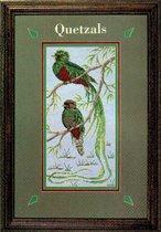 Кетцаль (священная птичка майя)