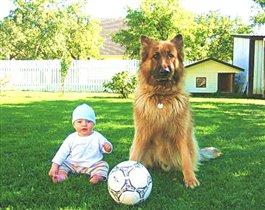 Футбольна команда :)
