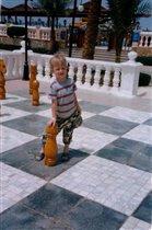 Супер шахматы!!!