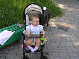 На прогулки!