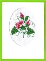 открытка с красным вьюнком