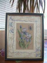 Oriental Irises (Dimensions)
