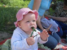 На природе и лук сладкий