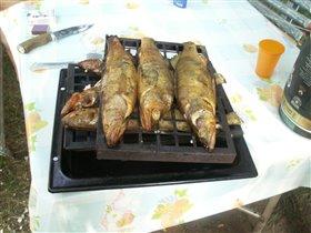 Хороша рыбка наша!