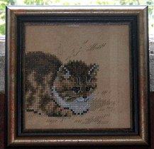 Котенок от Ланарте