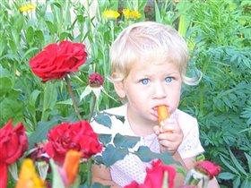 я тут в розах посижу и морковку погрызу
