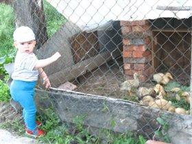 Занимательные и интересные каникулы нашего Тарзанчика, в деревне у бабушки!