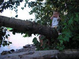 Тарзан не расчитал свои силы.