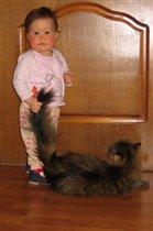 С 'любимой' кошкой