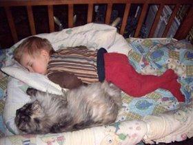 Даже спим вместе :) Ромка и Клепка!