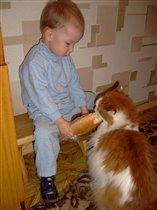 Вова, кот и булка