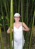 В зарослях бамбука иногда водятся беременные Аньки :-)