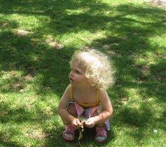 Маленький Тарзан. Солнечный зайчик