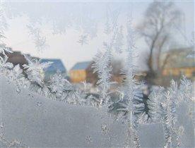Зима 2008
