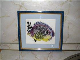 Рыбка №2 от РТО