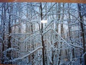Зима за окном... автобуса