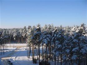 Мороз и солнце, день чудесный.....