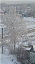 Березовая снегурочка