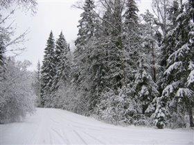 Зимняя дорога_1