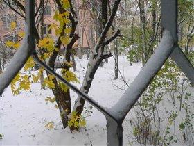 Может и не зима это вовсе, но снега много