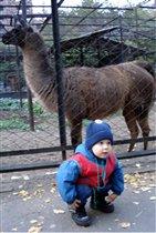 А мы ходили в зоопарк! Вот!