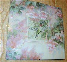 Колибри розовая