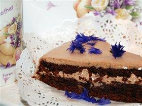 шоколадный торт по моей рецептуре
