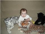 Сашка и ее любимые кошки