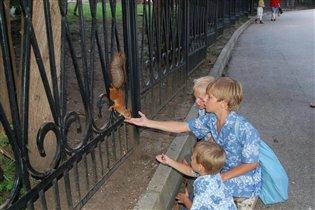 Белка песенки поёт да орешки всё грызёт...в Кисловодске