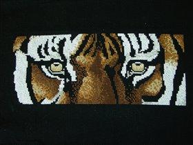 Тигрище!