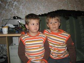 Двоюродные близнецы:)