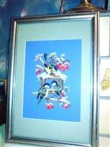 Синички от Риолис