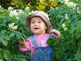 Крошка в цветушей картошке.