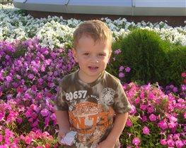 Маленький Король цветов