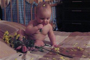 Цветочки, листики, лепесточки....