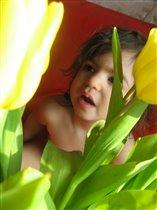 Где-то там... в лесу цветов...