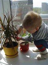 Юный садовод-любитель!