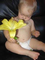 Маленький цветочек