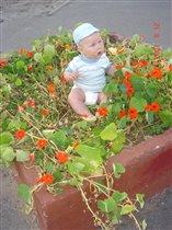 Мой любимый цветочек!!! Мой ВОЗДУХ И моя ЖИЗНЬ!!!