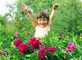 мой любимый цветочек