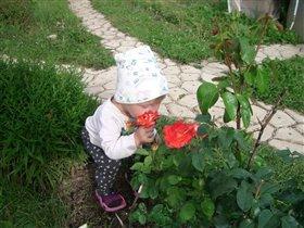 Сын Алеша и розы