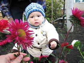 Тимурик и цветочки