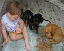 лучший друг человека-это собака. У меня их три