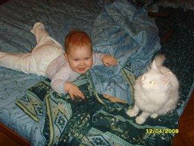 играем с котом