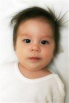 Яник 3,5 месяца