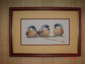 Птички-3 (и по количеству и по счёту)
