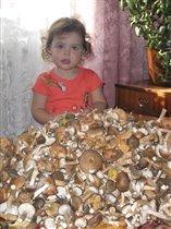 Соберу грибов лукошко - маме помогу немножко!