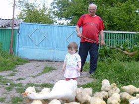 Дедушка, ты иди, я сама их во двор загоню!!!