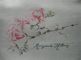 Цветочки от моей любимой Марии-Терезы Сент-Обин.