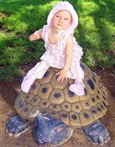 Прогулка на морской черепахе